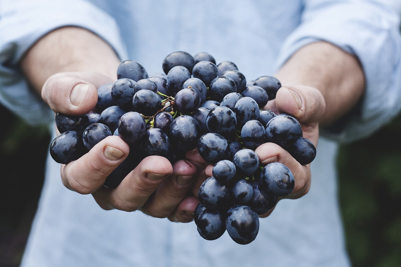 grapes, food for skin, healthy diet